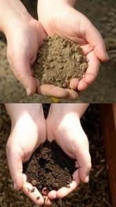 Converting dirt into soil through proper care.