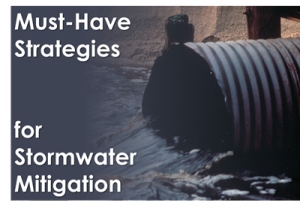 Must-Have Strategies for Stormwater Mitigation