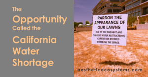 The Opportunity Called the California water Shortage