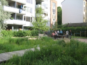large greywater garden in apartment complex
