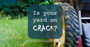 Is your yard on crack? mowing the lawn