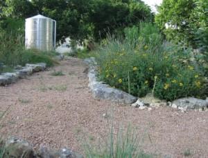 Rain tank in landscape