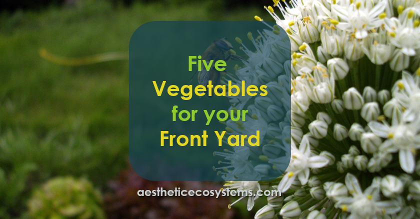 Five Vegetables for your Front Yard