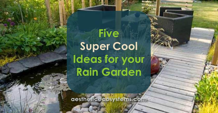Five Super Cool Ideas For Your Rain Garden Easy Living Yards