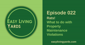 Episode 22 - What to do with property maintenance and HOA violations