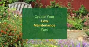 Create your low maintenance yard