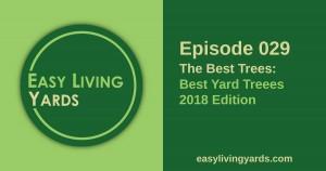 Best Yard trees, 2018 edition