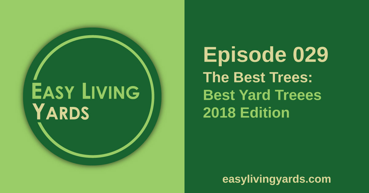 Best Yard trees, 2018 edition