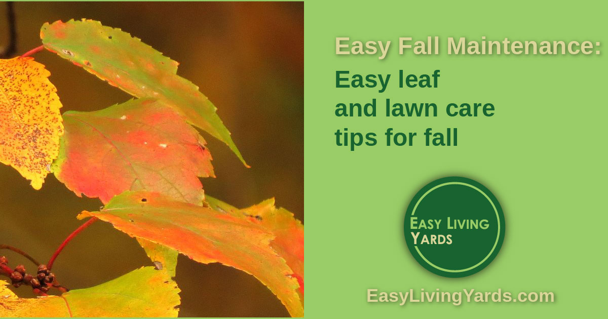 ELY 036 - Fall maintenance tips