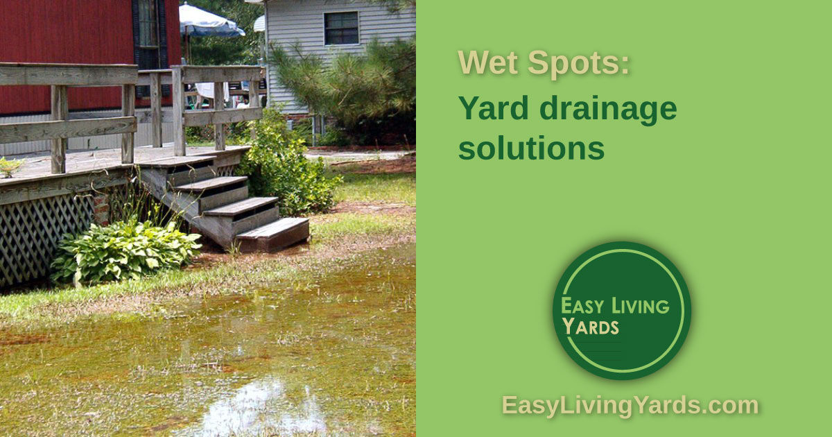 Wet spots: yard drainage solutions