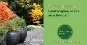 Landscaping ideas on a budget for DIY landscaping