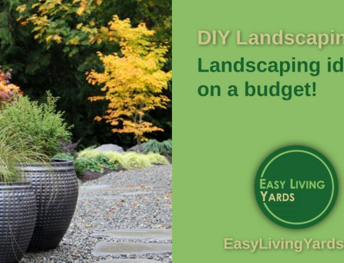 Landscaping Ideas On A Budget Ely With Diy Simple Landscape Designs