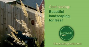 DIY Landscaping on a budget