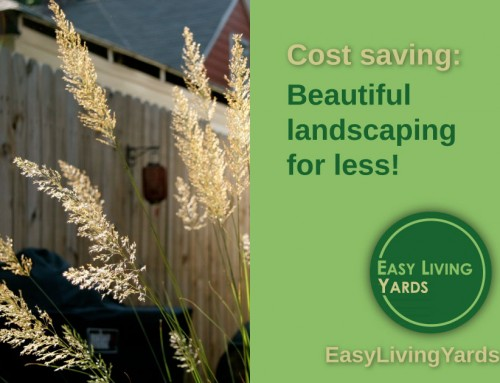 Cost saving strategies for landscaping