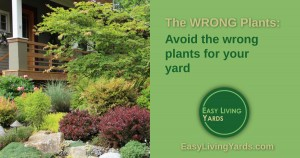 How to find the best plants for your yard by avoiding the wrong plants.