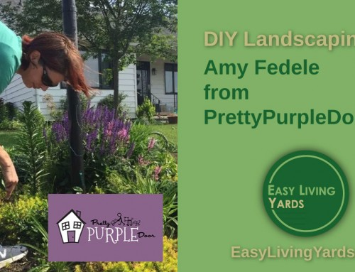 DIY Landscaping with Amy Fedele from Pretty Purple Door