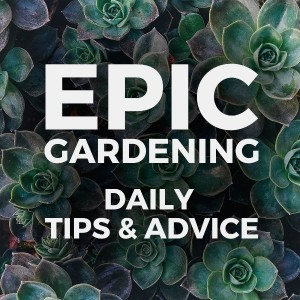 Epic Gardening with Kevin Espiritu
