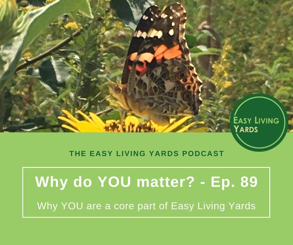 Why do you matter and what does it mean for low maintenance landscaping?