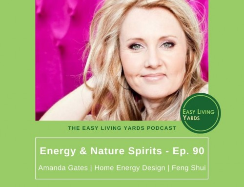 Embracing Energy and Nature Spirits – ELY 090