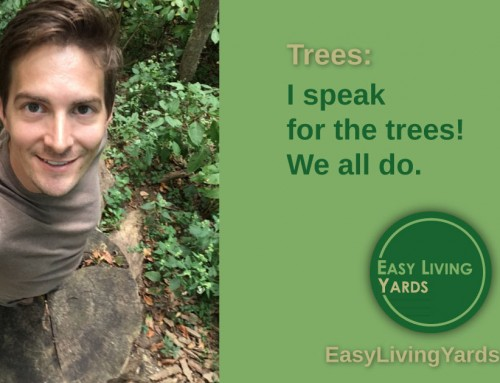 Speak for the Trees! – ELY088