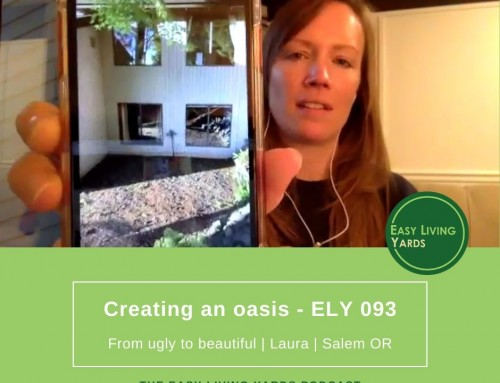 How to create a visual oasis-Laura-ELY093