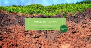Healthy soil and soil health