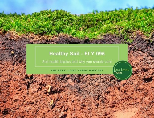 Healthy Soil and Why You Should Care-ELY096