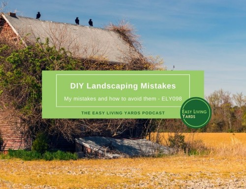 DIY Landscaping Mistakes-ELY098