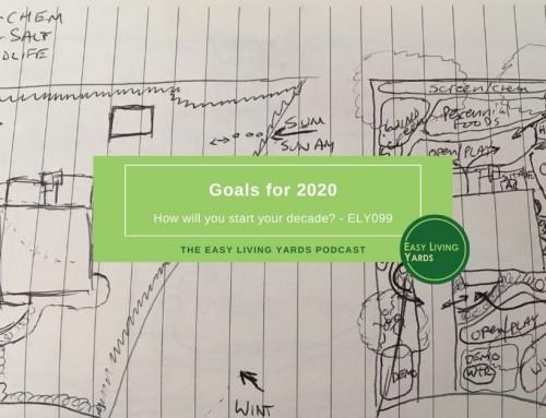 2020 Goals-ELY099