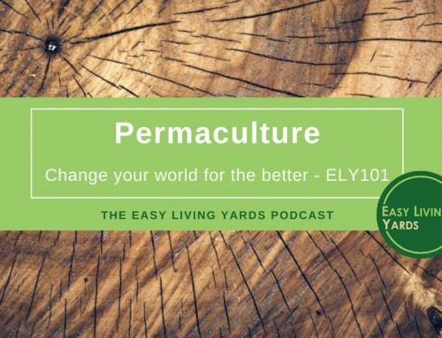 What is Permaculture-ELY 101