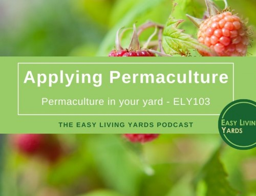 Applying Permaculture-ELY103