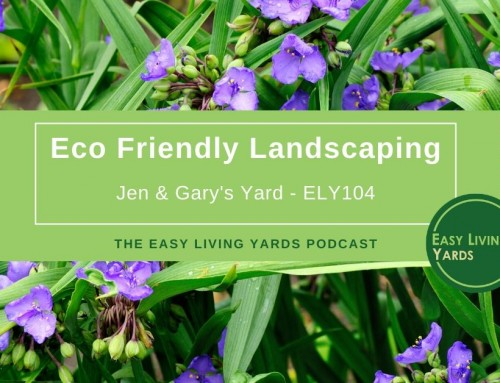 Beautiful Eco-Friendly Landscaping-ELY104