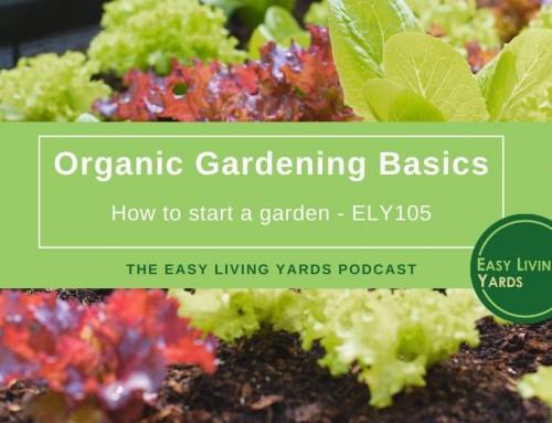 Organic Gardening Basics – ELY105