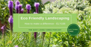 How to start Eco Friendly Landscaping