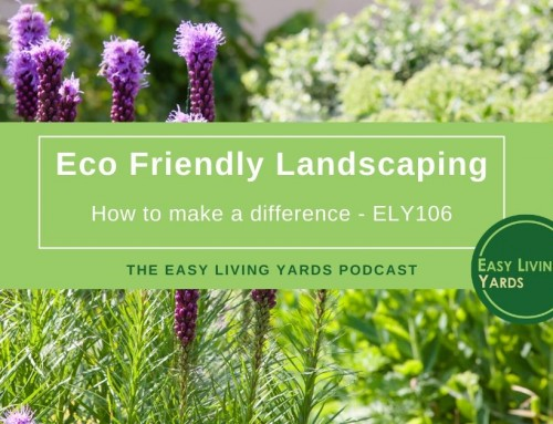 How to Start Eco Friendly Landscaping – ELY 106