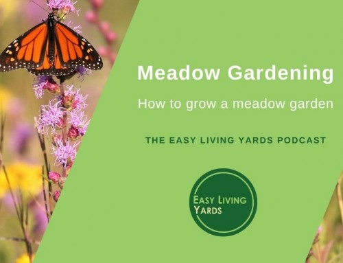 Prairie Gardening – Ecological Landscaping ELY107