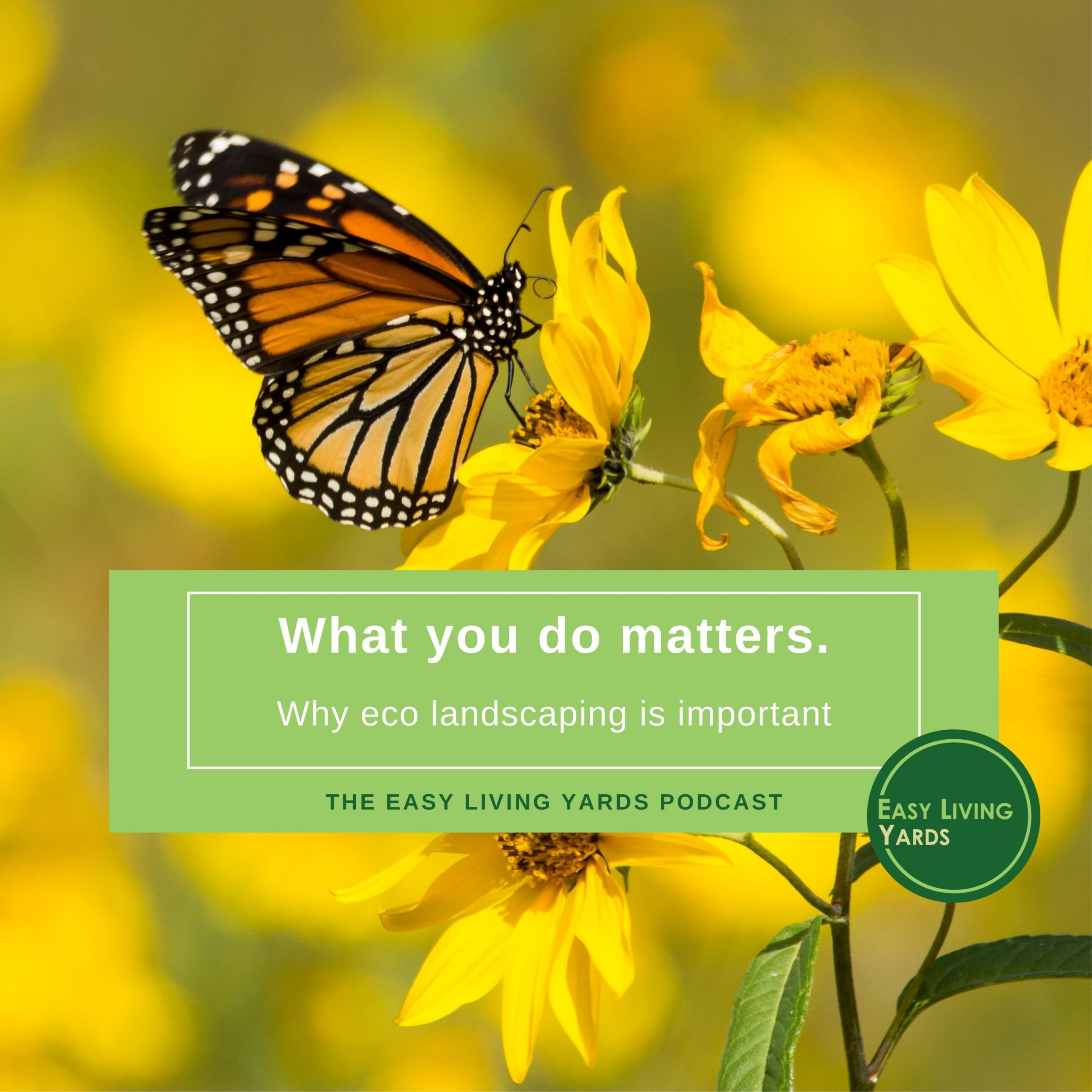Ecological Landscaping - Why you matter