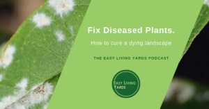 ELY008-Plant Diseases and what to do