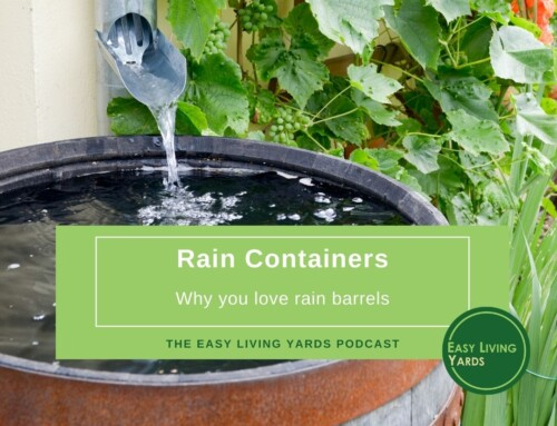 Rain Containers – ELY110