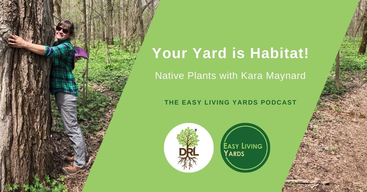 Your Yard is Habitat - Native Plants with Kara Maynard of Deeply Rooted Landscapes