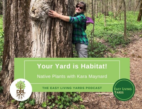 Your Yard is Habitat-ELY111