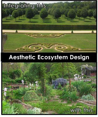 Aesthetic Ecosystem Design integrates aesthetic values with ecological values