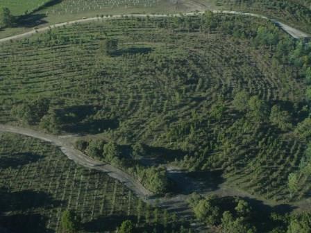 Well-established agricultural keyline design
