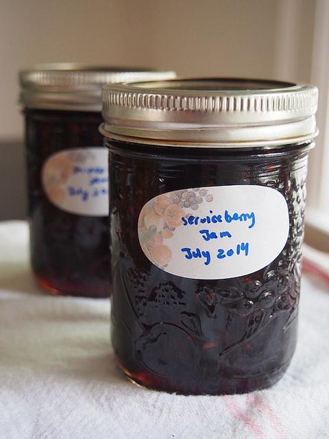 Serviceberry Jam Homemade
